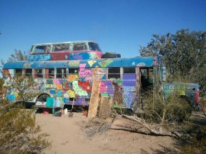 stray cafe bus